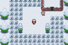 Winter View in Pokemon Dark Rising